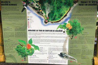 Arahoho Blowhole information