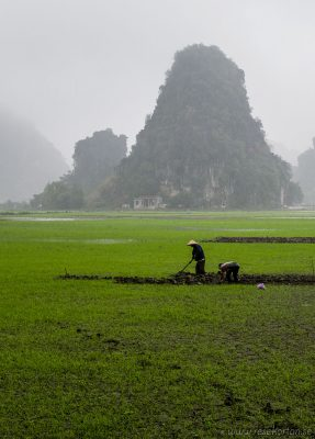 Men working at Ninh Binh