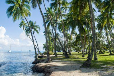 Ta'ahiamanu Beach, Moorea