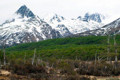 Centro Invernal Nunatak