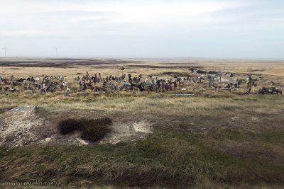 Boot hill, Falkland Islands