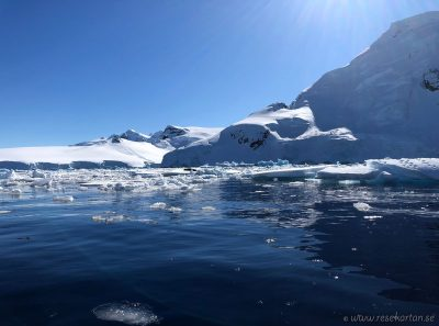 Kanoying tour in Antarctica