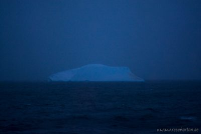 Our first iceberg
