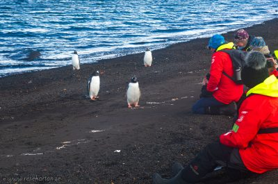 Whalers bay, Deception Island